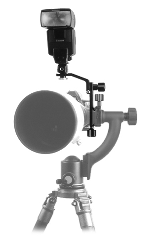 Wimberley F-6 Sidekick Bracket mounted on Sidekick in BH-300 ball head